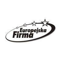 Europejska Firma 2003