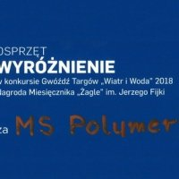MS POLYMER on the WiW